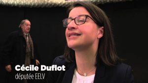 Investissement locatif Duflot